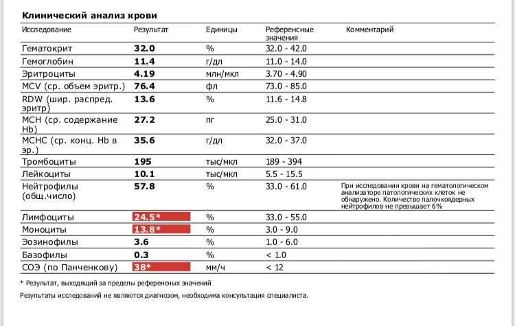 Показатели плазматических клеток в общем анализе крови