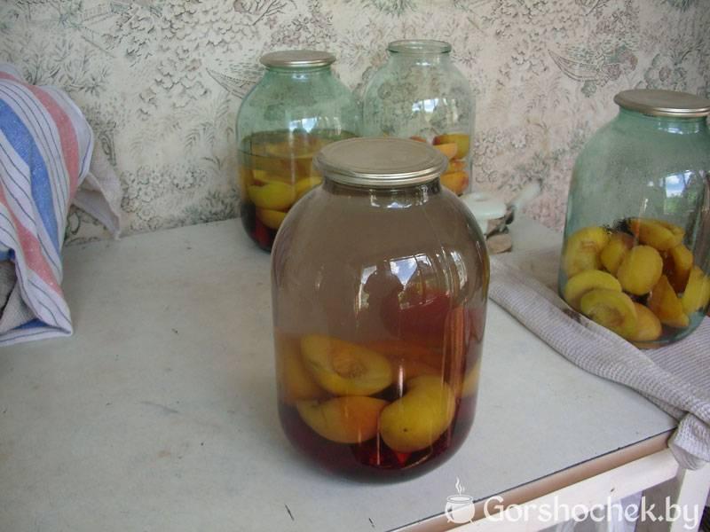 Рецепты приготовления компота из сушеных яблок для грудничка и когда можно вводить в прикорм