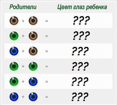 Цвет глаз у ребенка от родителей: таблица вероятности карего, голубого и зеленого оттенка | konstruktor-diety.ru