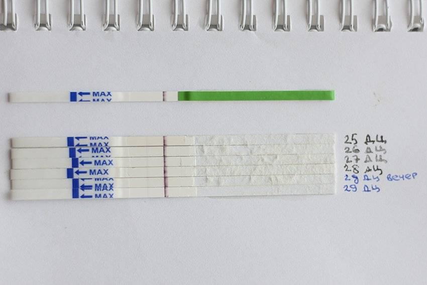 Температура и задержка месячных: может ли это быть беременность, если тест отрицательный, или нет?