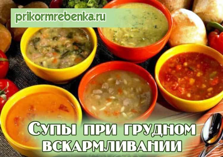 Супы для кормящей мамы: рецепты на курином, грибном и овощном бульонах