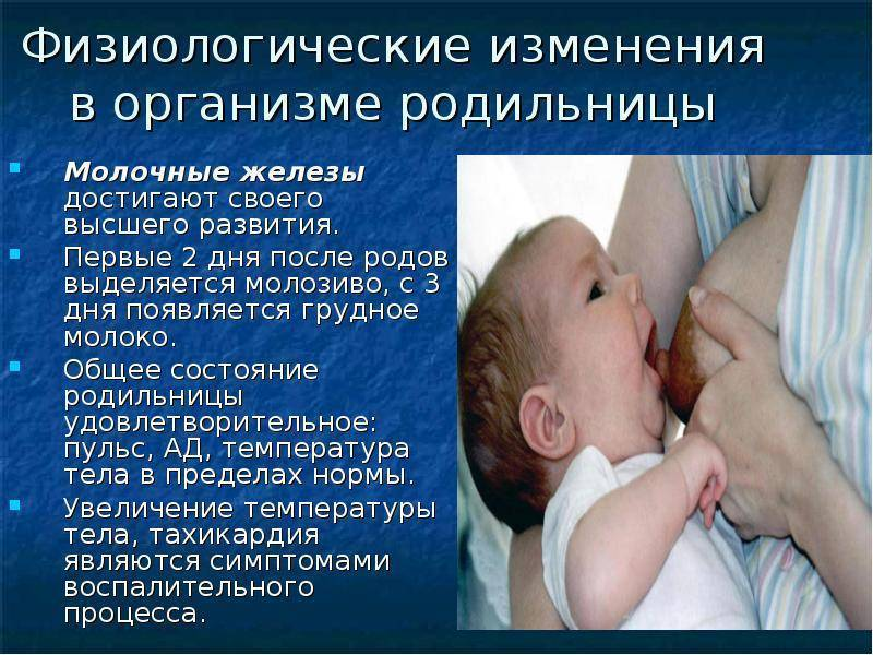 Почему нет молока после родов: причины, что делать