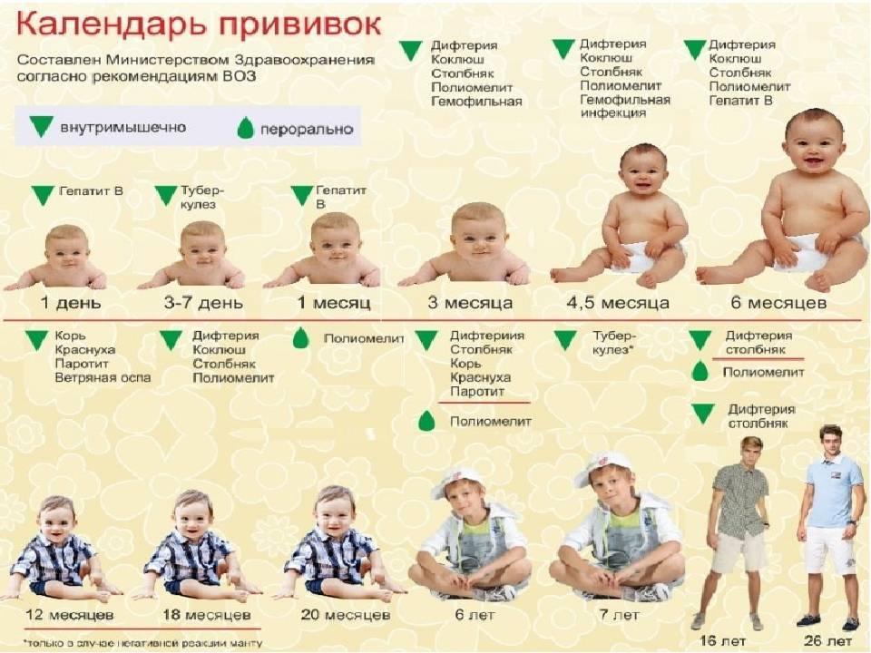 График обязательных прививок для детей до года