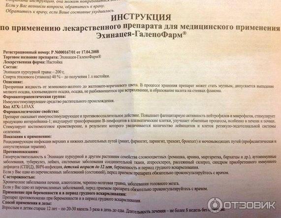 Эхинацея в новосибирске - инструкция по применению, описание, отзывы пациентов и врачей, аналоги