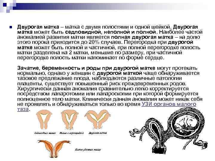 Седловидная матка: позы для зачатия | pro-md.ru