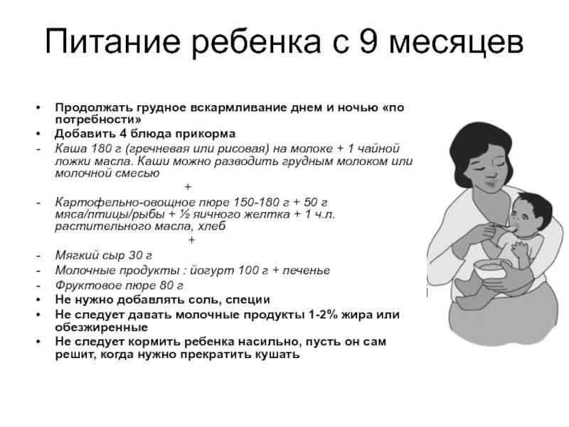 Как часто нужно кормить новорожденного