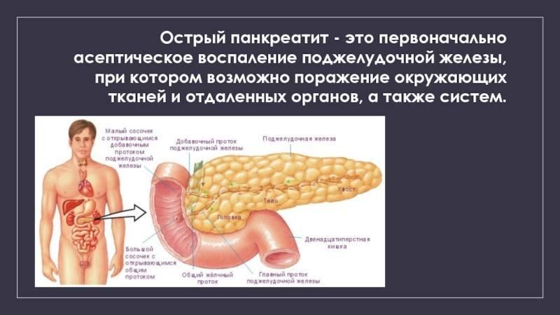 Как проверить поджелудочную железу - диагностика в спб | медицинский центр - медпросвет