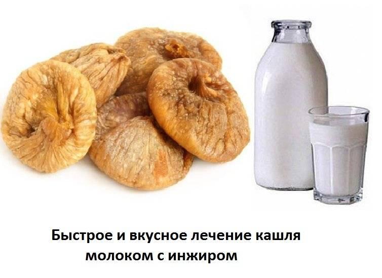 Инжир от кашля: показания и противопоказания, рецепты