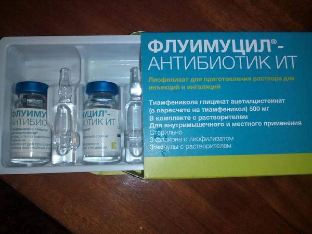 Флуимуцил – антибиотик ит: инструкция по применению, цена и отзывы. как разводить для ингаляций - medside.ru