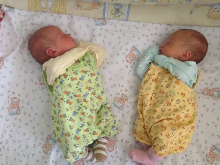 На каком сроке может родиться двойня?