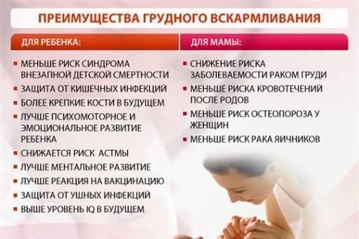 Основные преимущества грудного вскармливания ребенка