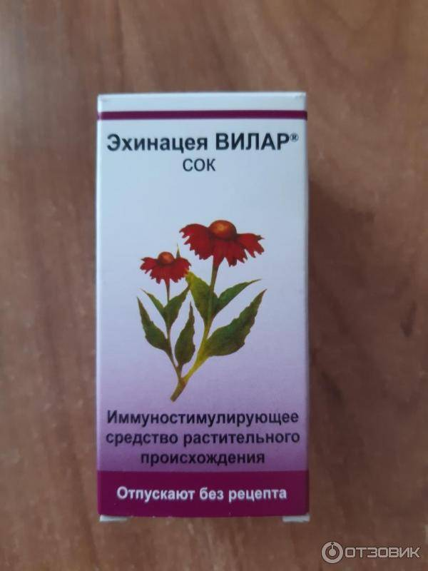 Эхинацеи сироп: описание, инструкция, цена   аптечная справочная ваше лекарство