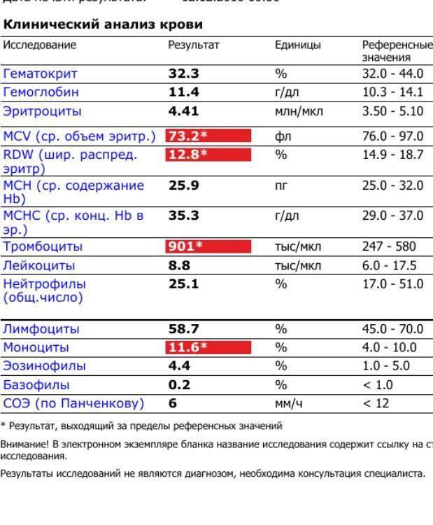 Повышены моноциты у ребенка в крови: причины отклонений от нормы