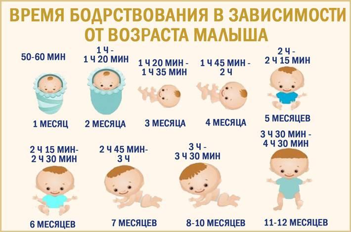 Время ночного сна у новорожденного