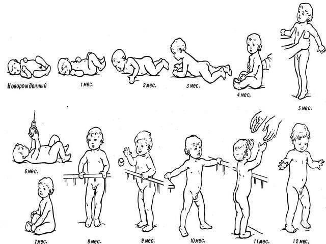 Перпендикулярно полу: когда дети начинают сидеть и как помочь освоить этот навык?