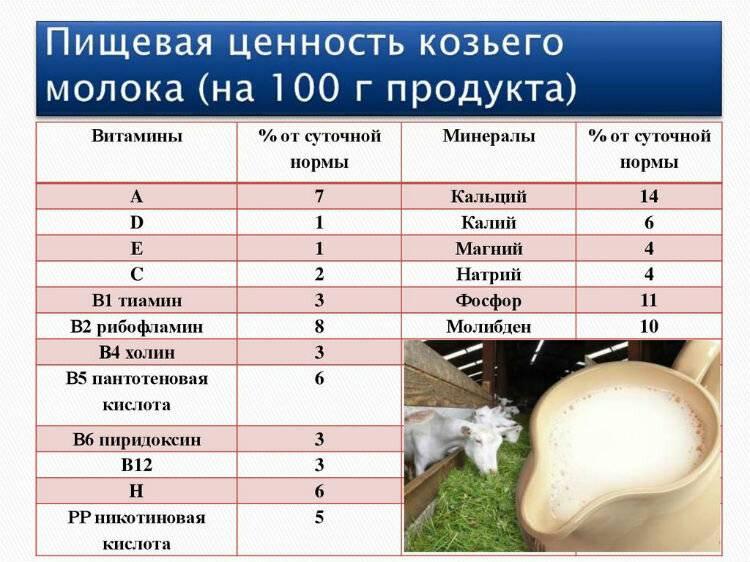 Козье молоко - польза и вред, свойства, состав, как правильно пить