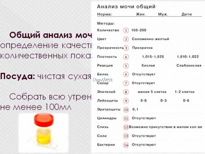 Как сдавать кровь на сахар ребенку в 1 год и старше: как подготовиться и сколько не кормить?