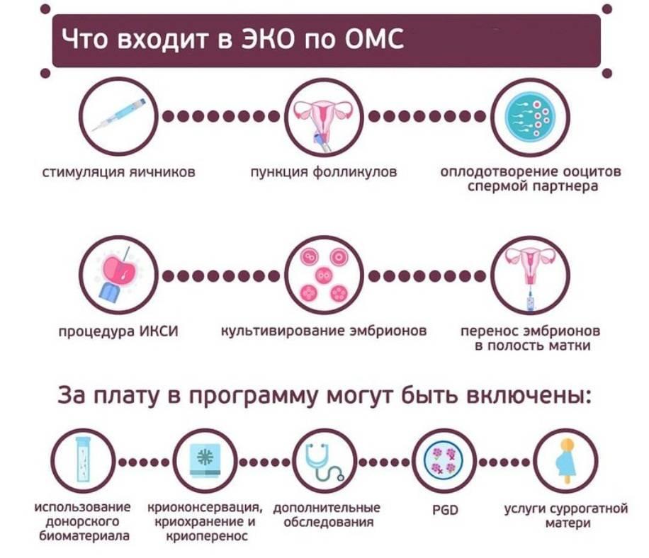 Тонкости эко: как бесплодные пары могут стать родителями - vtomske.ru