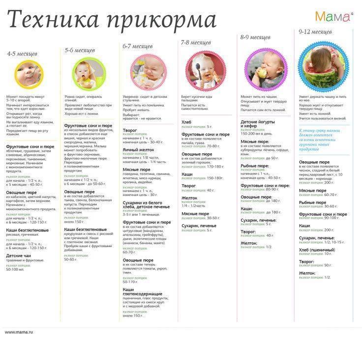 Как и когда правильно вводить прикорм ребенку при грудном и искусственном вскармливании: последовательность введения продуктов по месяцам и примерное меню ребенка до года | qulady