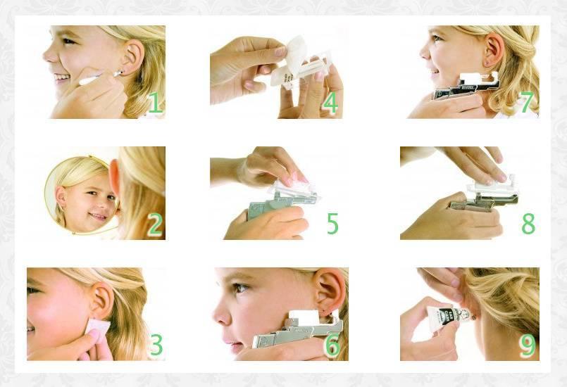 Как производить обработку ушей после прокола