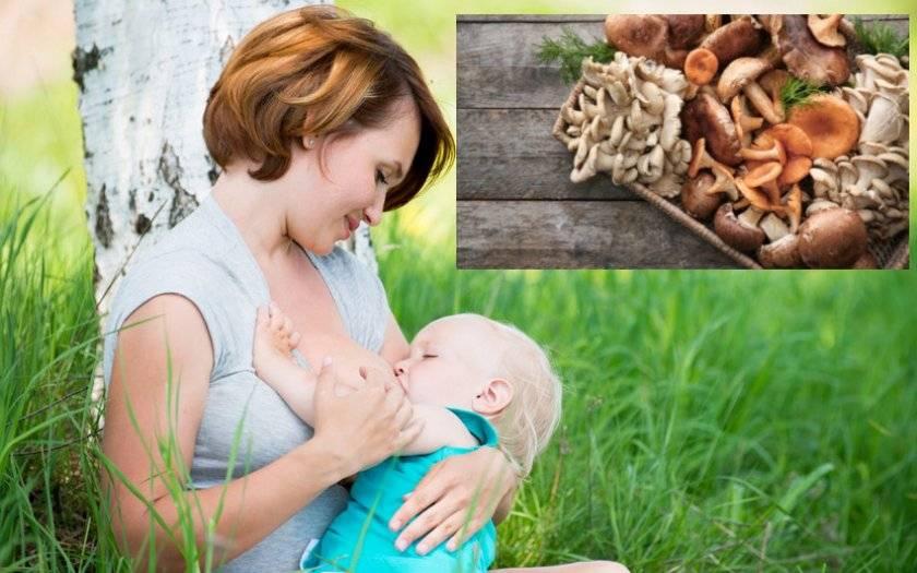 Можно ли шампиньоны при грудном вскармливании маме