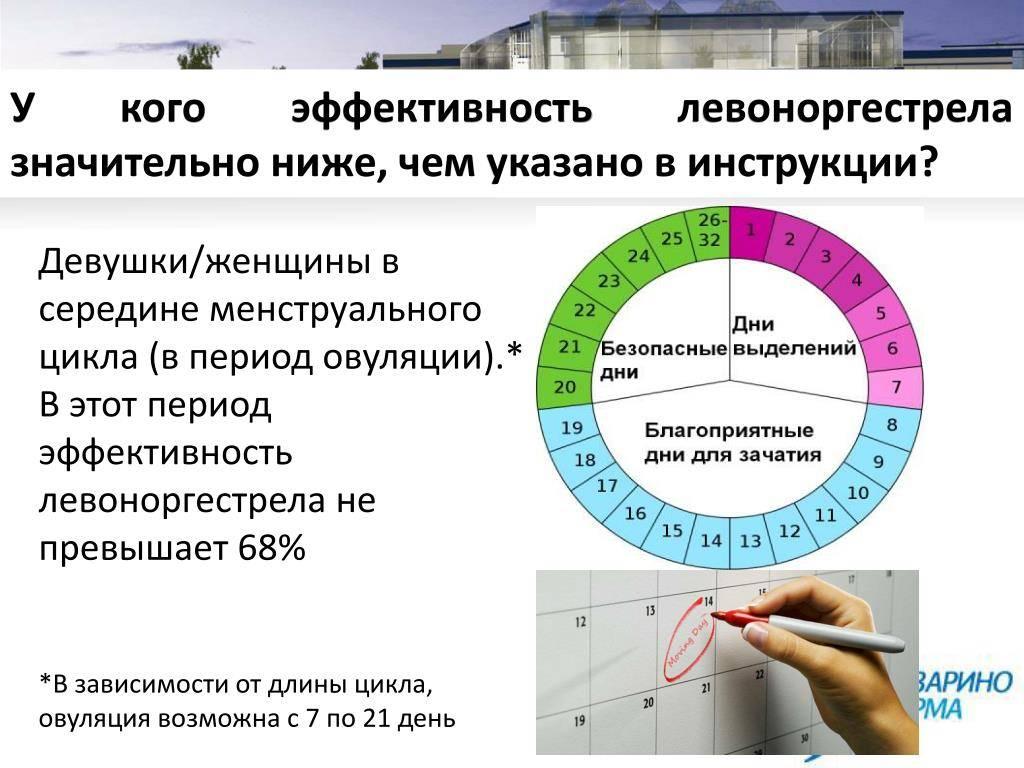Эко: вероятность забеременеть после процедуры, факторы, которые влияют на успех