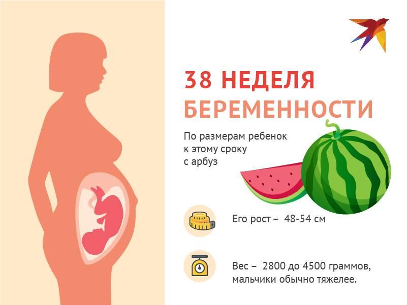 36 неделя беременности: что происходит с малышом и мамой, развитие плода, вес и рост — медицинский женский центр в москве