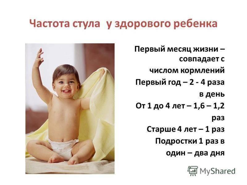 Сколько раз в день должен какать годовалый ребенок?
