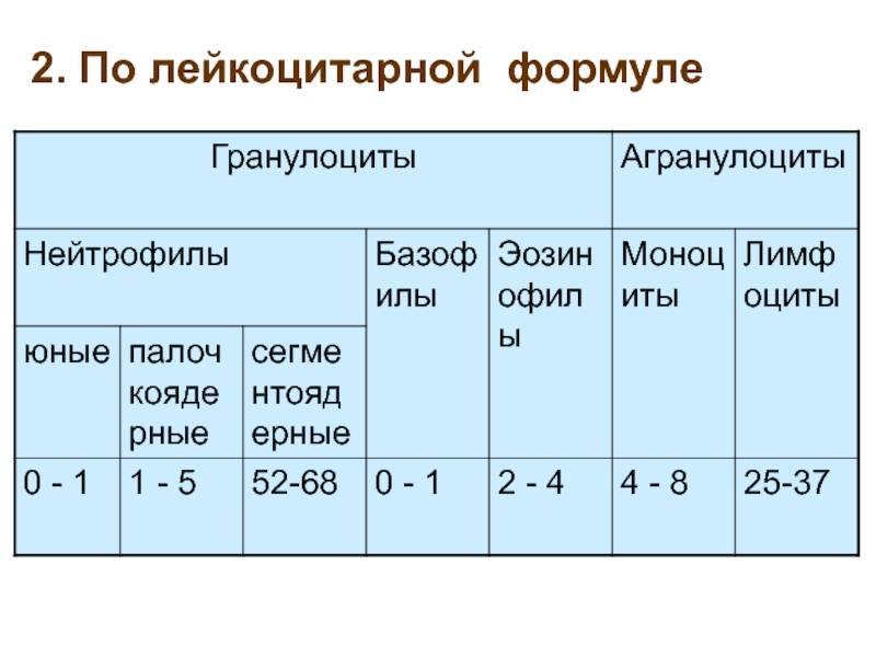 Лейкоцитарная формула