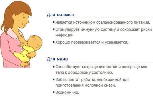 Режим питания грудного ребенка - режим кормления на грудном вскармливании