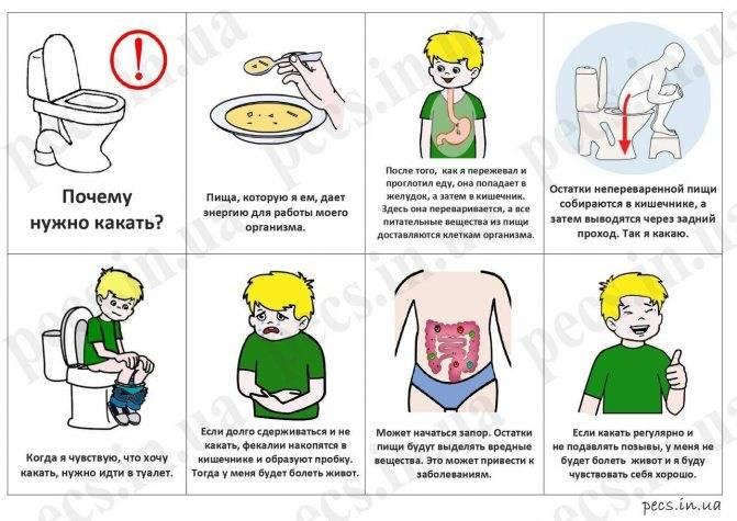 Как научить ребенка вытирать попу самостоятельно (после туалета)?   гигиена   vpolozhenii.com