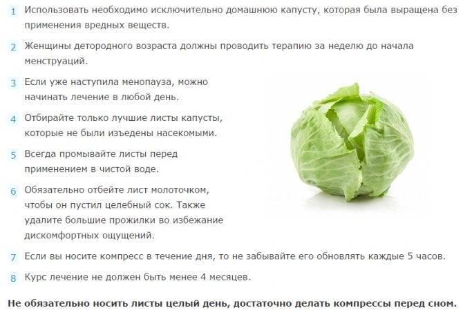 Способы лечения мастита в домашних условиях: капустный лист, компрессы и травы