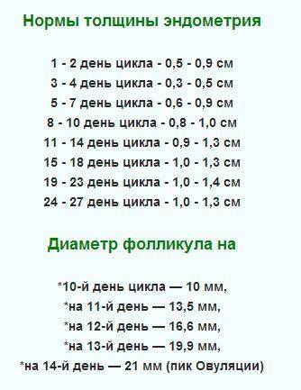 Размер фолликула при овуляции: при каком размере фолликула происходит овуляция? когда будет овуляция, если фолликул 18, 19, 20 мм?