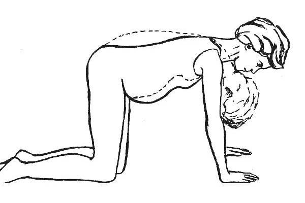 Позиционный дренаж при беременности newmed.su - все для мамы и малыша