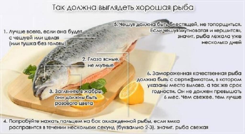 Можно ли копченую рыбу при грудном вскармливании и как ее вводить в рацион матери и ребенка?