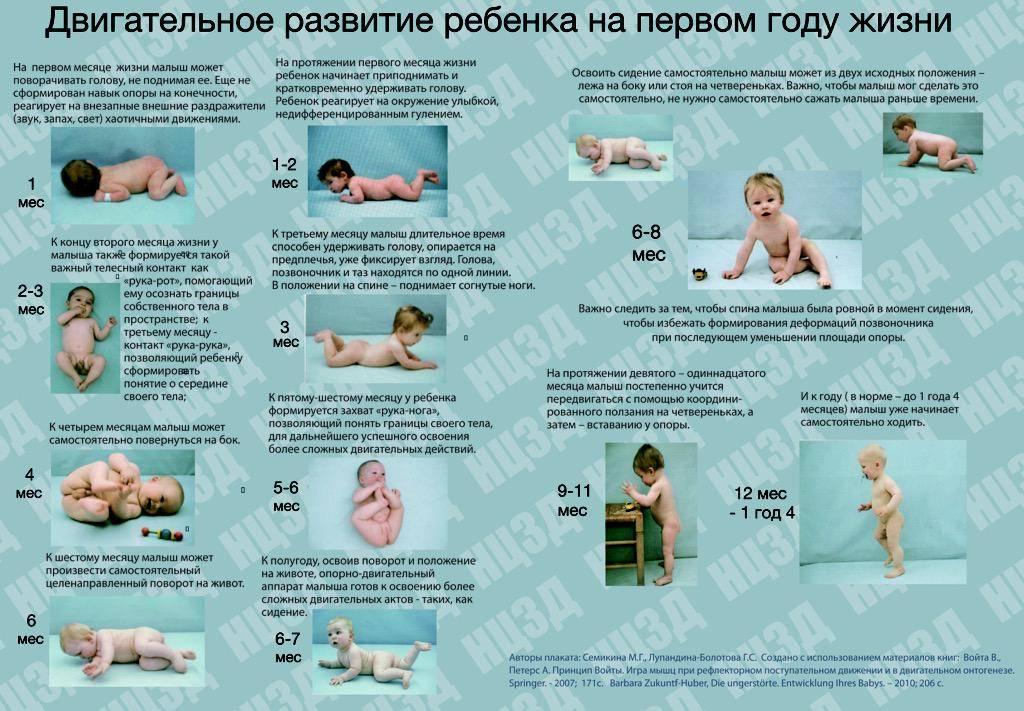 Этапы развития ребенка по месяцам после рождения и до 1 года