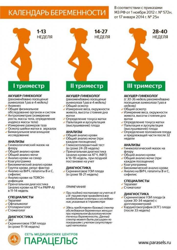 3d/4d ультразвуковое исследование при беременности