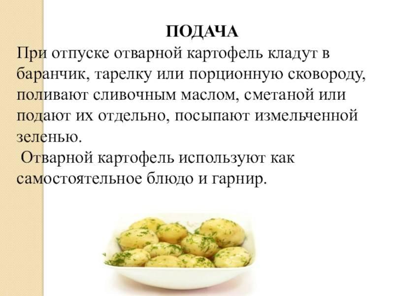 Любимая многими картошка — можно ли её без опаски есть при грудном вскармливании?