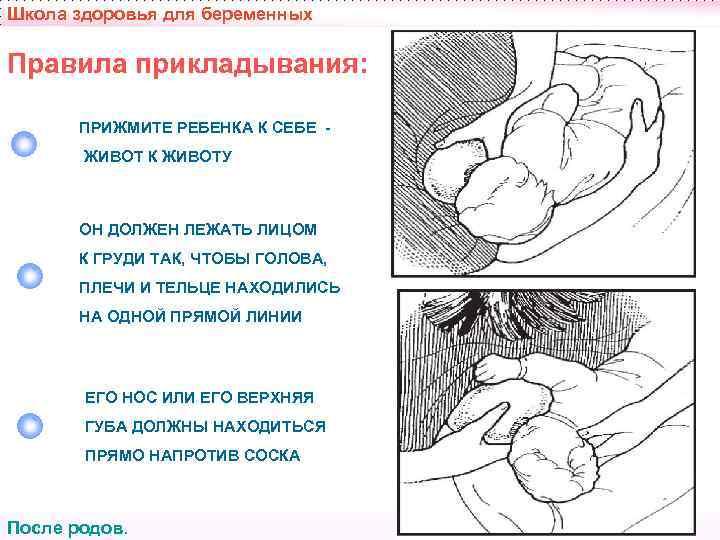 Когда начинать кормить новорожденного грудным молоком?