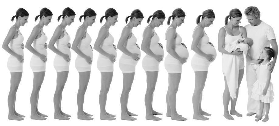 Грудь при беременности когда начинает расти, особенности изменений ощущений и внешнего вида на ранни