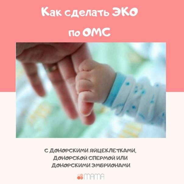 Эко с пгд эмбриона (преимплантационная генетическая диагностика) в клинике «линия жизни»   стоимость пгд диагностики при эко в москве в 2021 году