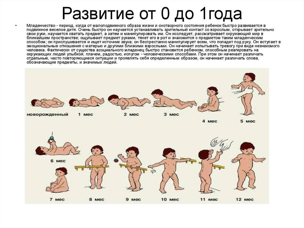 Как меняется новорождённый: особенности развития по неделям