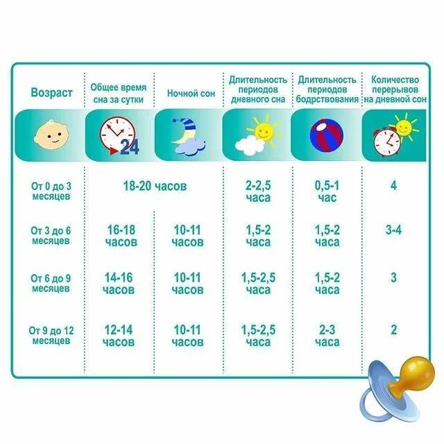 Режим дня ребенка в 1 год: питание, сон и распорядок дня малыша в 12 месяцев