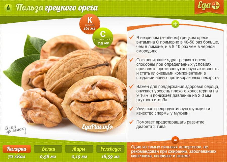 Грецкие орехи при беременности: польза и вред для женщин, сколько можно есть