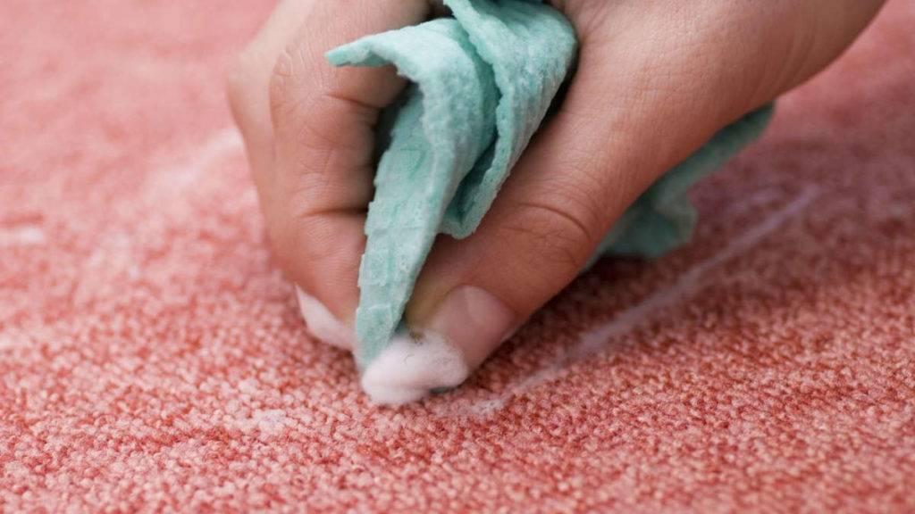 Как удалить запах мочи с ковра: 32 лучших средства для чистки в домашних условиях