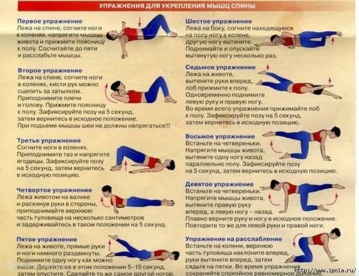 Как делать массаж ребенку 6-9 месяцев в домашних условиях