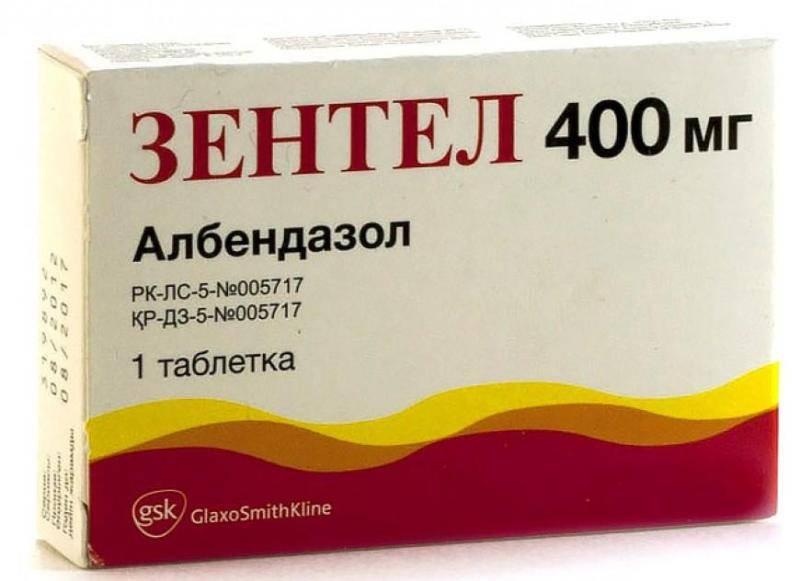 Таблетки от глистов. топ-10 самых эффективных препаратов
