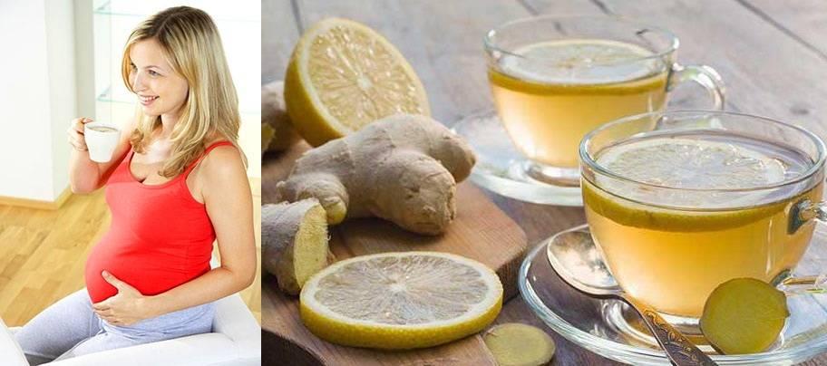 Польза и вред мёда