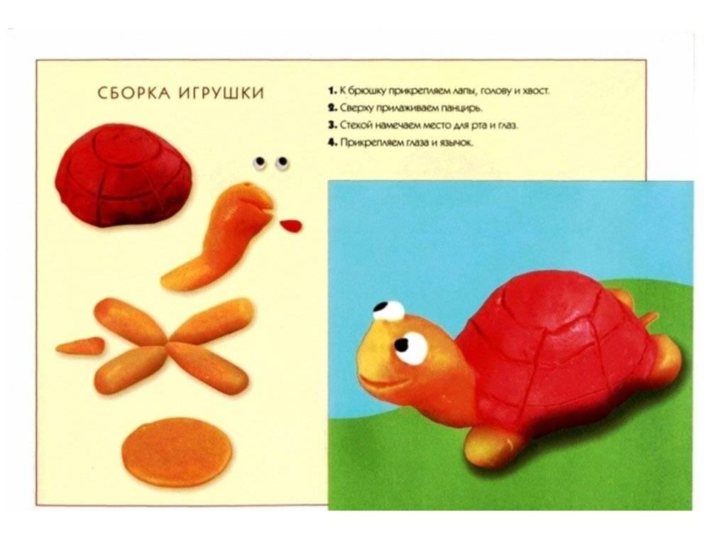 Поделки из пластилина для детей 2-3 лет: пошаговая инструкция, интересные решения | учимся, играя | vpolozhenii.com