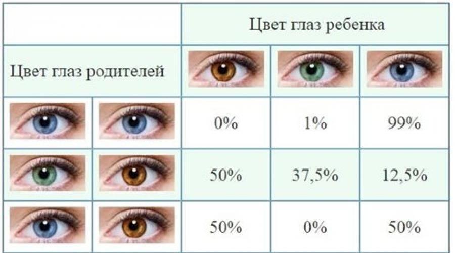 50 оттенков детской радужки: как и когда меняется цвет глаз у новорожденных?